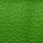 Apfel-74