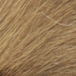Kuhfell blond-47-k4