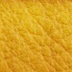 Mango-66