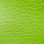neon Büffel-54