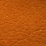 Orange Mandarine-64