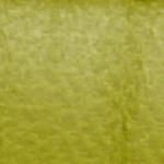 Lindgrün Lamm-025