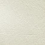 Weiß Büffel-18
