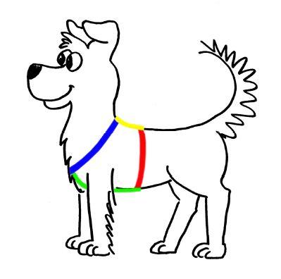 uploads/dog.jpg