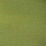 Kiwi grün 23